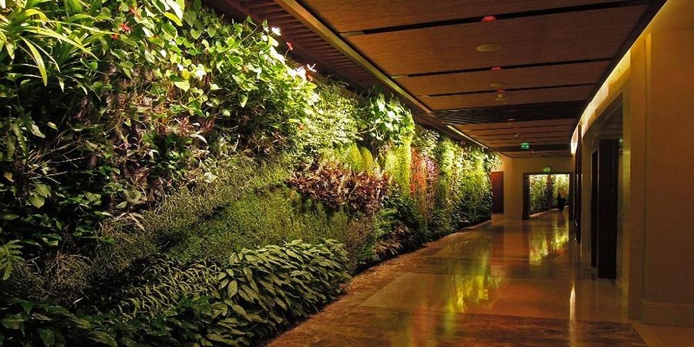 living-walls-secret-soil-gallery (1)